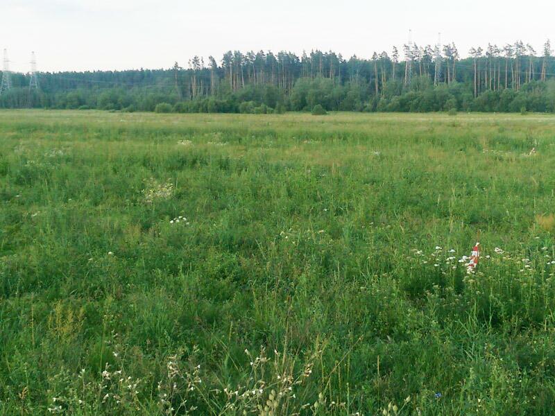 Коттеджный посёлок  «Александрово парк» по адресу Московская обл, Можайский р-н, Спутник п в 83.4км от МКАД предложения по цене от 114 000 руб.