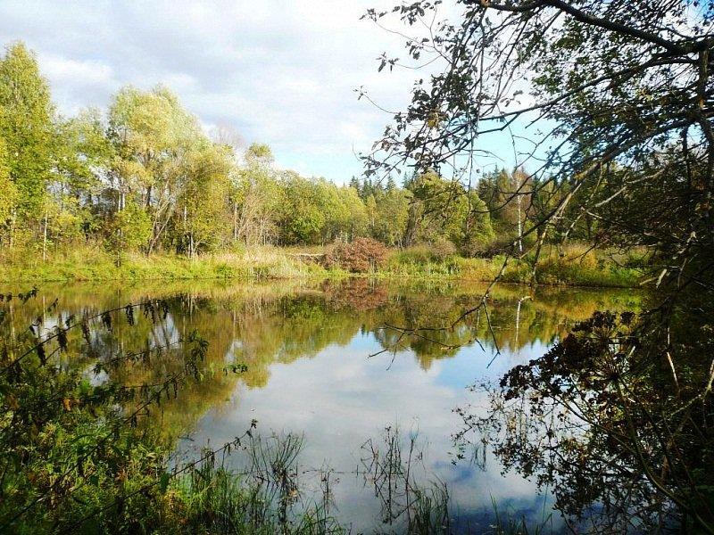 Коттеджный посёлок  «Никольское Озеро» по адресу Московская обл, Можайский р-н, Никольское д в 84.6км от МКАД