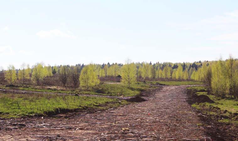 Коттеджный посёлок  «Федорцово» по адресу Московская обл, Щелковский р-н, Степаньково д в 62.5км от МКАД